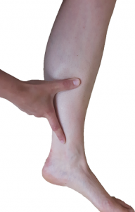 Pain location of shin spints: the the lower two thirds of the lower leg.